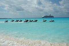 Caribben  加勒比海