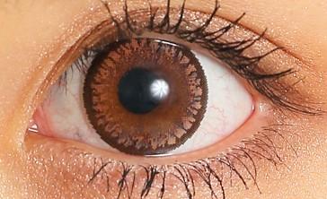 candymagic_1day_sugarbrown_eye