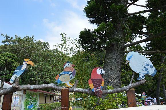 森林鳥花園01