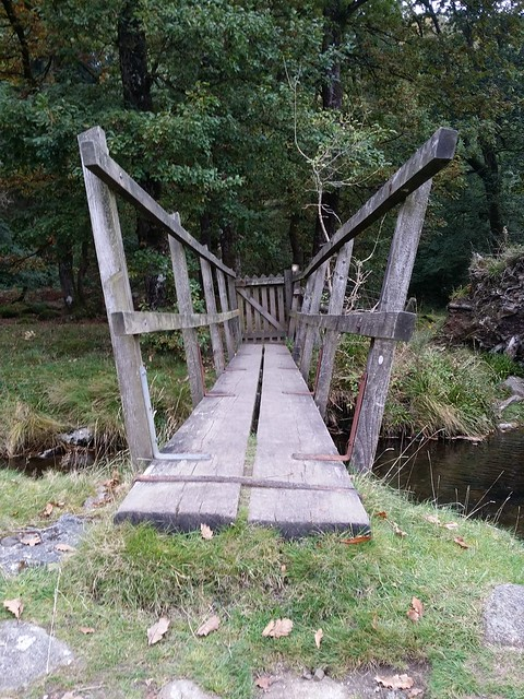 Bridge near Chapel Ford