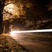 Autumn lights by Moritz Tronnier