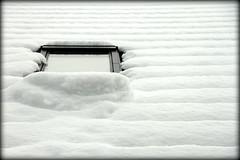 Dagen efter en ordentlig omgang sne