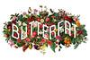 Butterfat site banner FW '15