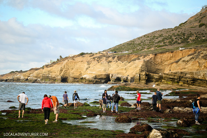Cabrillo National Monument - Best Tide Pools in San Diego.
