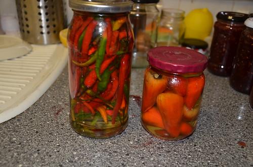 chillies in oil Dec 15