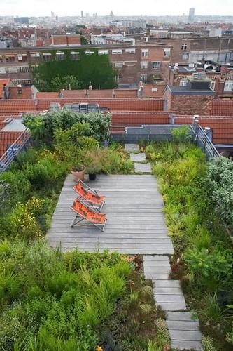 Urban Roof Terrace