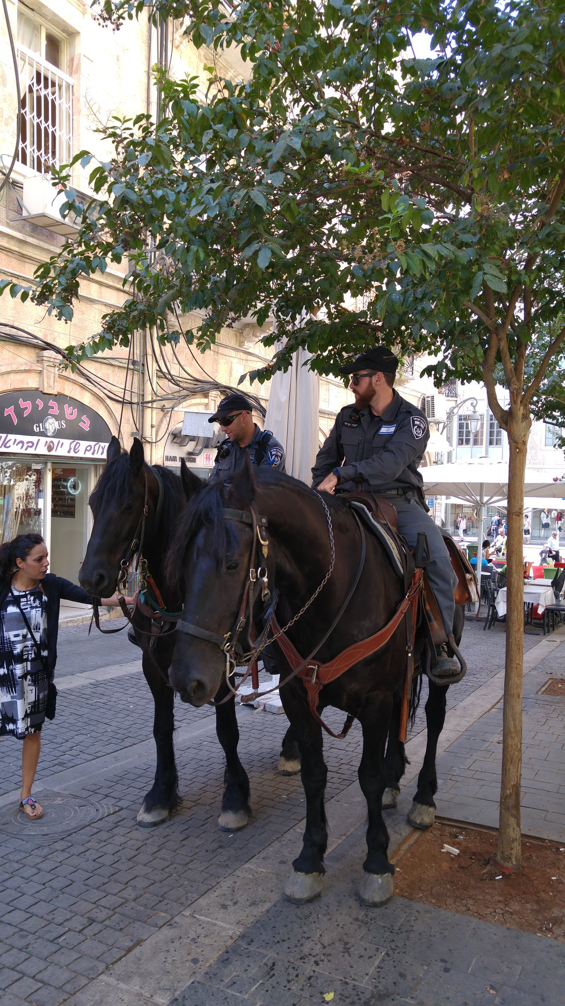 Horse Police