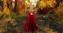 Its Autumn @ Fair Play
