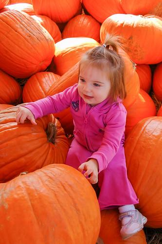 Pumpkin Climbing