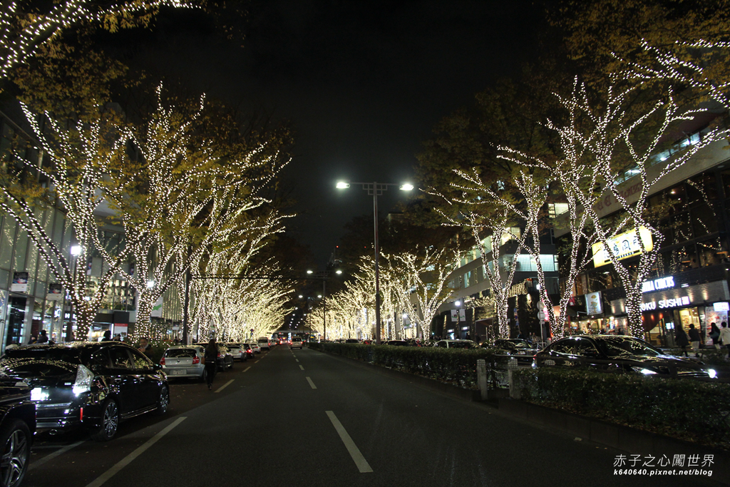 Tokyo Winter Illuminations- 表参道Hills-IMG_9744100