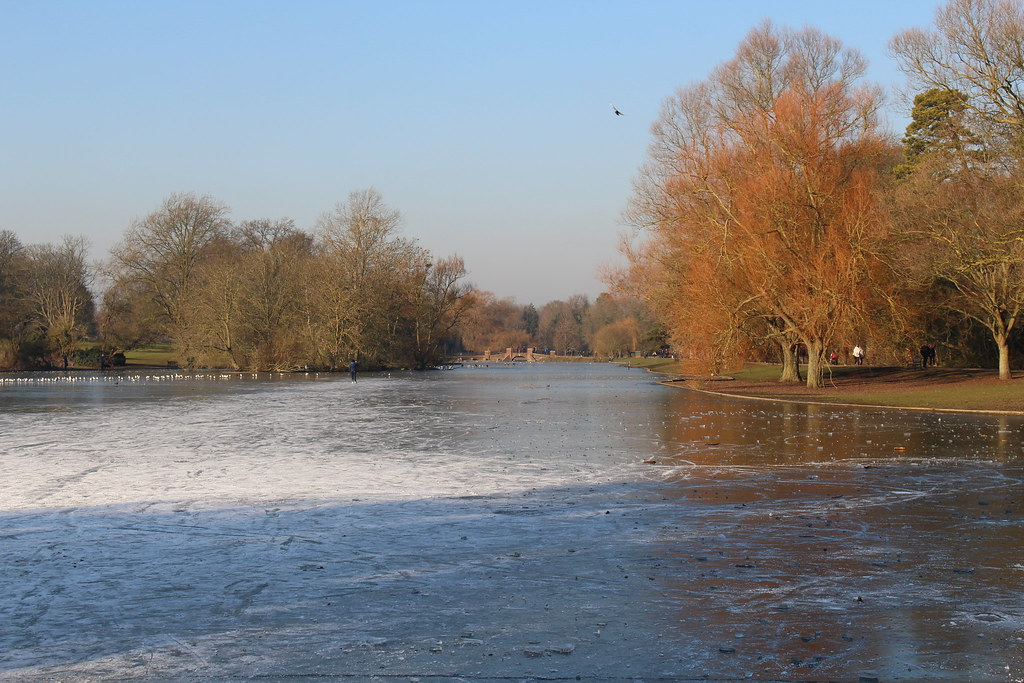 The lake at Verulamium Park