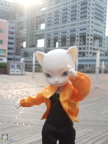 001_TOD Dolliehmon 004