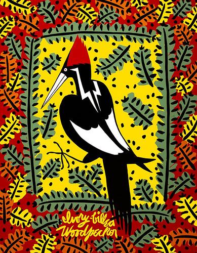 12_TGW_Agusta-Agustsson_Ivory-Billed-Woodpecker_1988