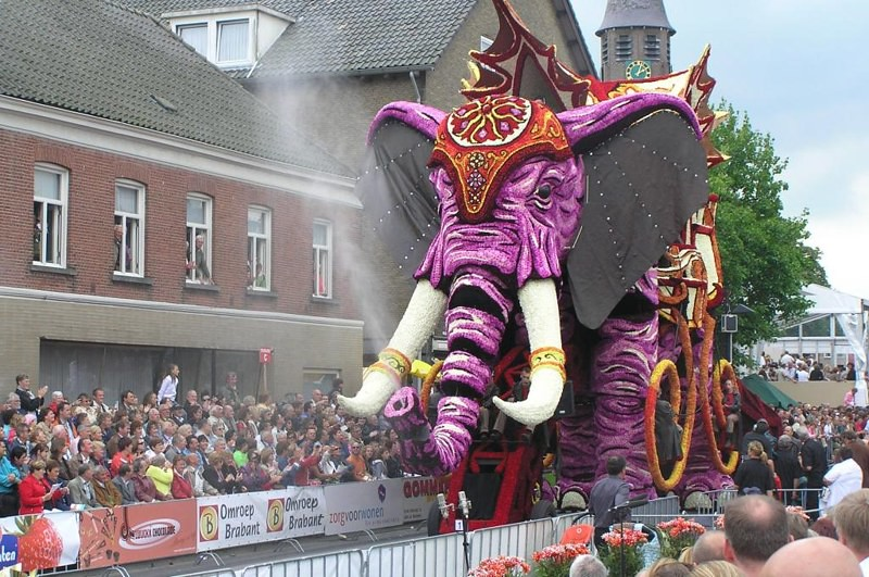 Elephant from 2007 edition