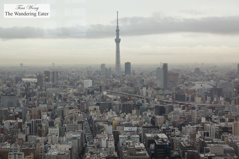 View of Tokyo Skytree from my seat