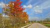 Autumn along 27 Mile Road