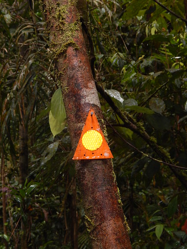 Trail markers, Mount Bartle Frere
