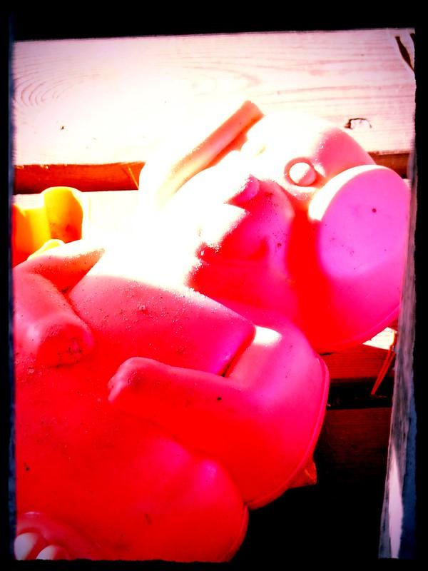 vaaleanpunainen porsas