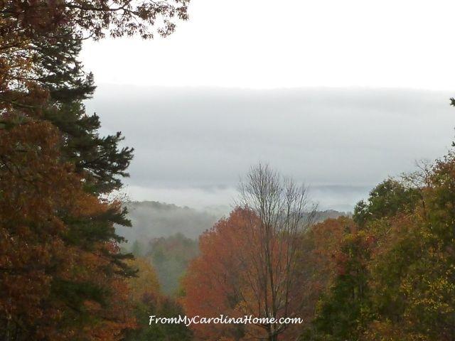 November 1 Valley fog 2015 - 3