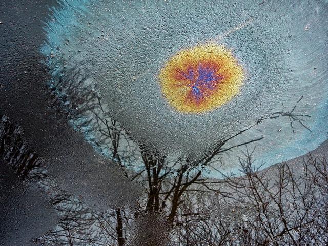 DSC00433 Driveway Art Color