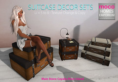New Release Suitcase Decor Set 1