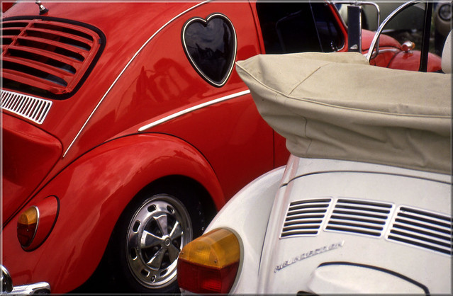 Volkswagen Beetles in love
