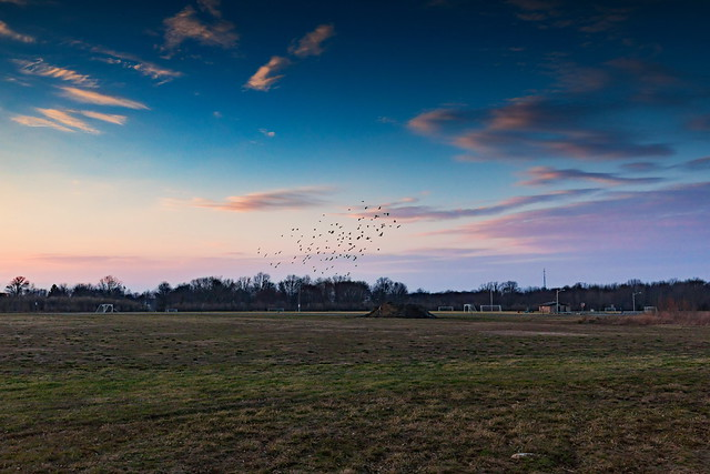 Trotters Crossing Complex - 16-35mm F4L - Canon 5D Mark IV