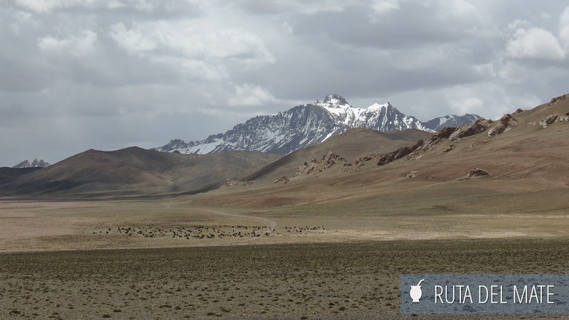 Pamir Highway Tayikistan (20)