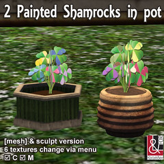 2 Painted Shamrocks in pot