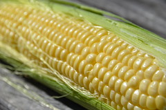 plant(0.0), produce(0.0), fruit(0.0), dish(0.0), sweet corn(1.0), food grain(1.0), vegetarian food(1.0), maize(1.0), corn on the cob(1.0), food(1.0), corn on the cob(1.0), cuisine(1.0),