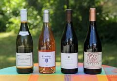 Lower Falls Wine
