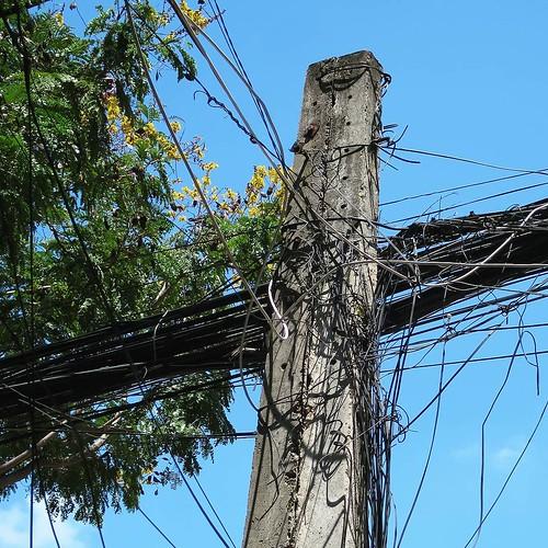 日本の電柱もすごいと思うけど、ダナンの電柱は時々とんでもなくすごいことになってる。