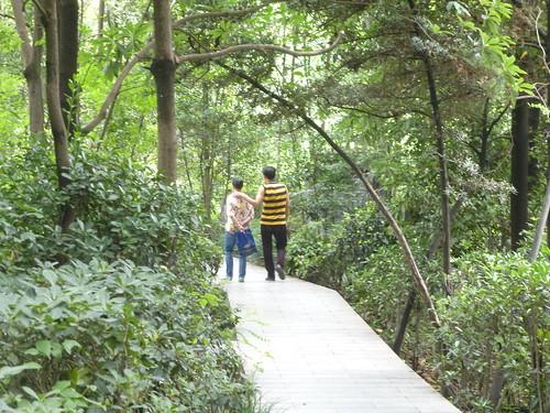 CH-Chengdu-Parc du Peuple (15)