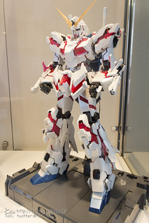 TGP2015_HSM-17
