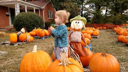 St. Paul UMC Fall Fair - Dyson with Pumpkin Patch
