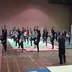 Yoga Satra in aurangabad nov 2015