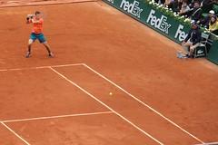 Roland Garros 2015 - Tomas Berdych