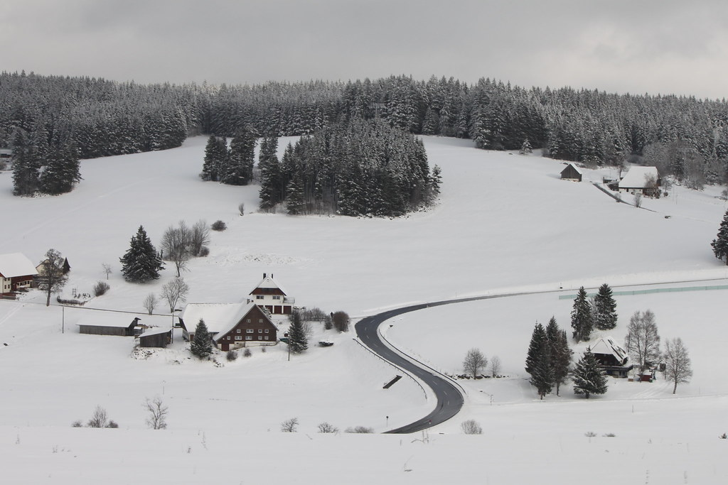 Schwarzwald Black Forest in the snow