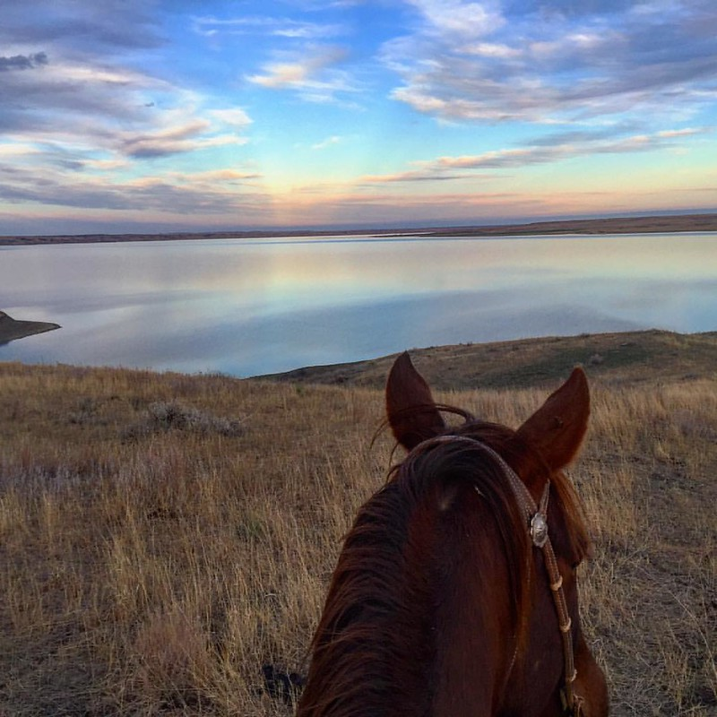 @dxdesigns and I rode out the very last moments of daylight yesterday, moving cows to fresh pasture. It was a peaceful, warm evening. Strange for November. No worries, a cold front started through last night! This has to be one of the prettiest views on