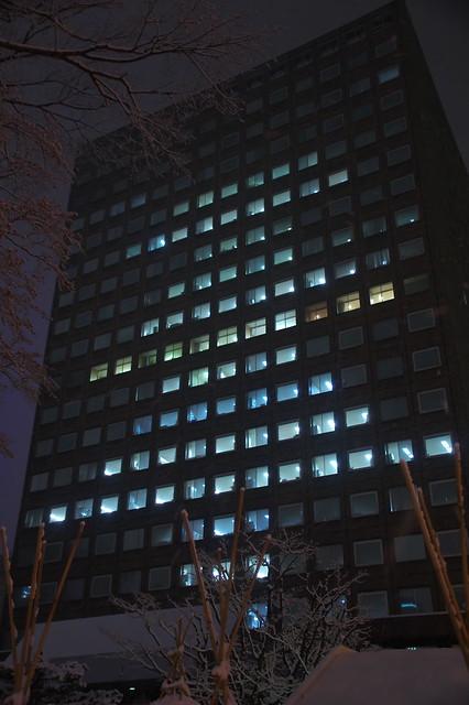 札幌市役所本庁舎 クリスマスツリー_07