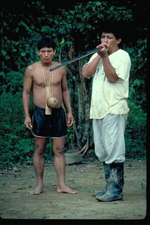 Ecuador Amazon Blow dart