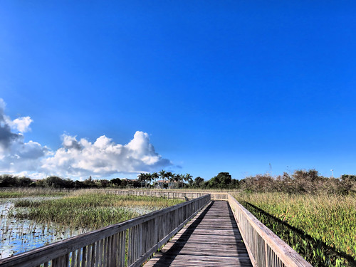 SW Regional Library boardwalk to south HDR  20151212