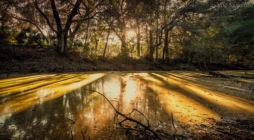 river reflections water shadows landscape trees leadinglines nature sunset