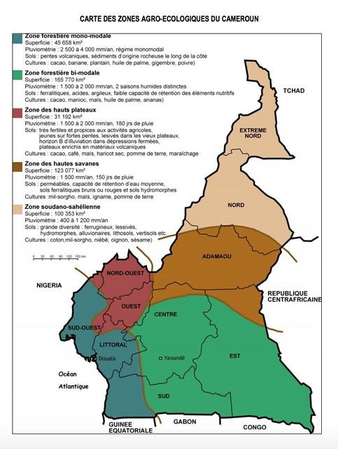 Carte agro-alimentaire du Cameroun