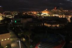 Day 7 / St. Petersburg & Tampa