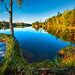 Crisp September Afternoon (Explored) by Tore Thiis Fjeld