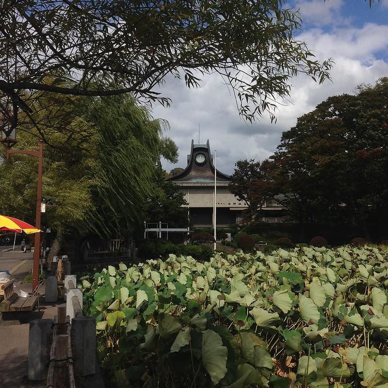 旧秋田県立美術館。なんか面白いデザイン。誰の設計だろう?