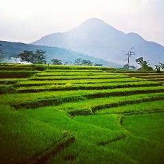 Gunung Penanggungan, Jawa Timur.