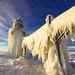 Ice Monster by PhotoJacko - Jackie Novak
