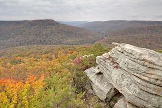 Welch Point, Bridgestone Firestone WMA, White County, Tennessee 10